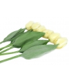 Natural touch tulpen bos creme