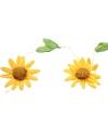Zonnebloemen feestslinger geel
